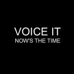 Voice it cover Vorderseite 2012